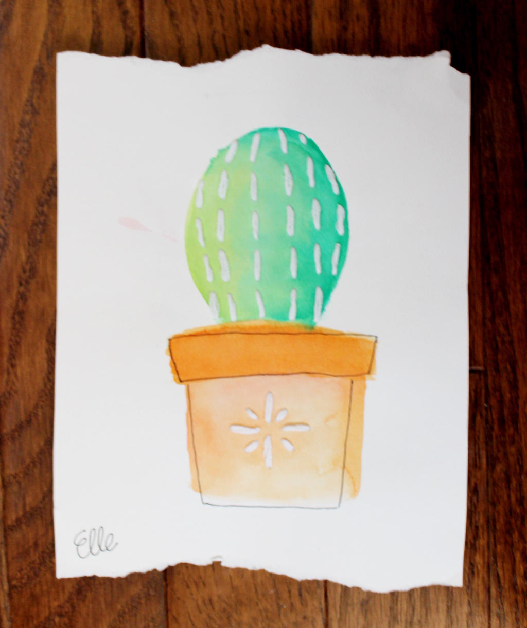 Lil Barrel Cactus by wingedmusician