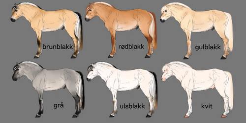 Norwegian fjord horse colors