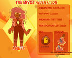 TEF:Amber Application