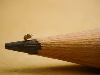 Spider. by thr33face