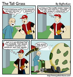 The Tall Grass 9
