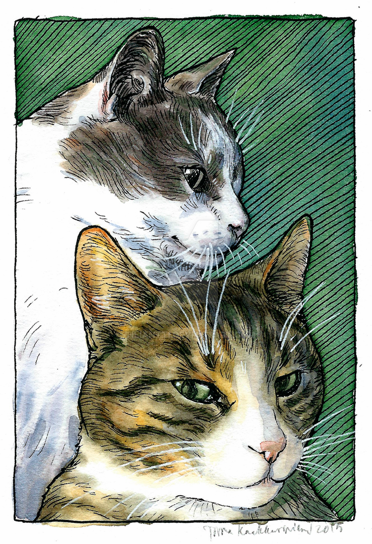 Christmas cats by Tiliantti