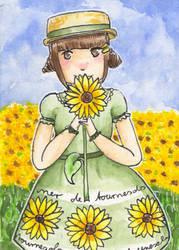 373 Sonnenblumenmeer