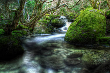 HDR_Thredbo_Creek7