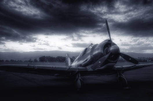 WW2 fighter aircraft