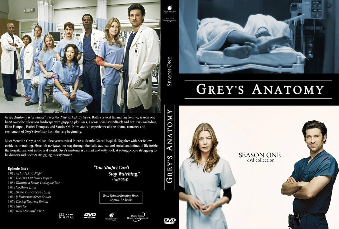 greys anatomy series 13 dvd