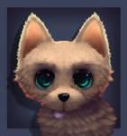 Fluffy doggo
