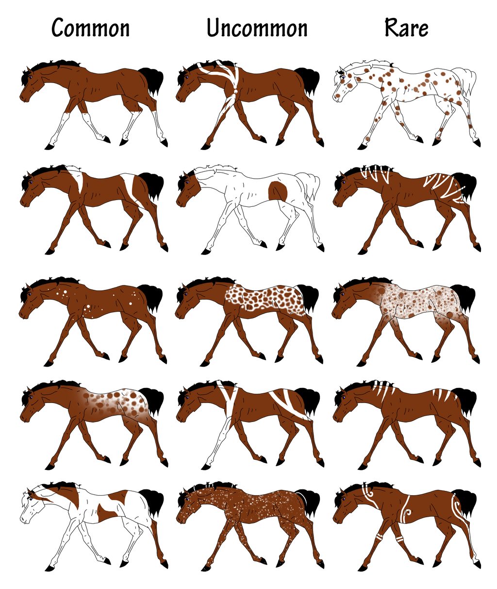 Horse coat colors and markings - photo#2