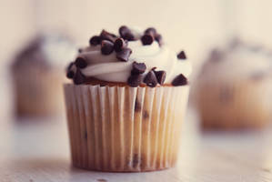 Cupcake II by Tracys-Place