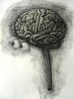 Brain by FeralFungus