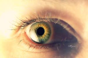 Julia's Eye by MizarII