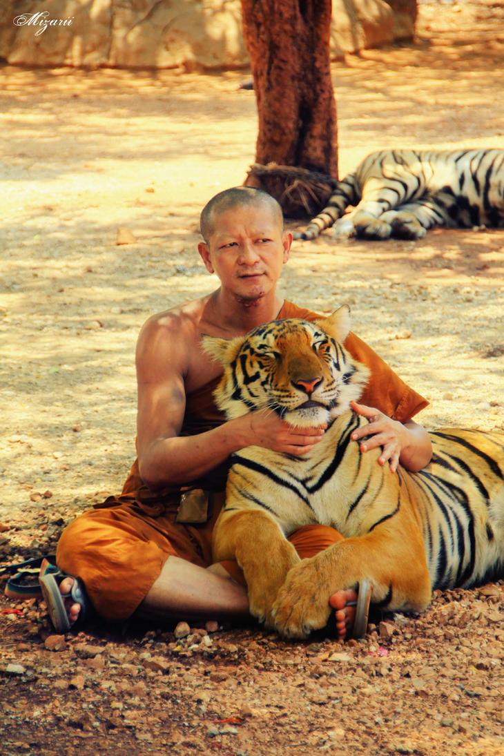 Tiger Love by MizarII