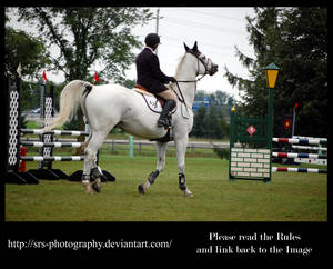 - Show Jumping 15 - :Stock: