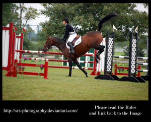 - Show Jumping 13 - :stock: