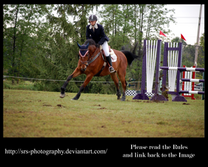 - Show Jumping 10 - :Stock: