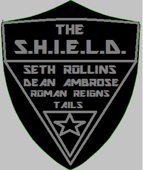 WWE and Sonic The Shield logo by Tails458 on DeviantArt