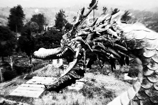 Stone Dragon by sampratot