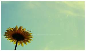 Spring by Ninoness