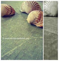 Shell by Ninoness
