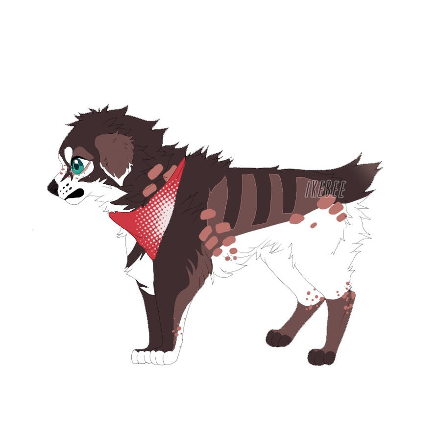 Ausky dog adopt by MochaPupp
