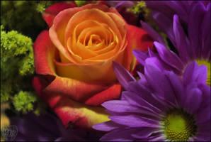 Colorful Arrangements by MISERYxISxLOVE
