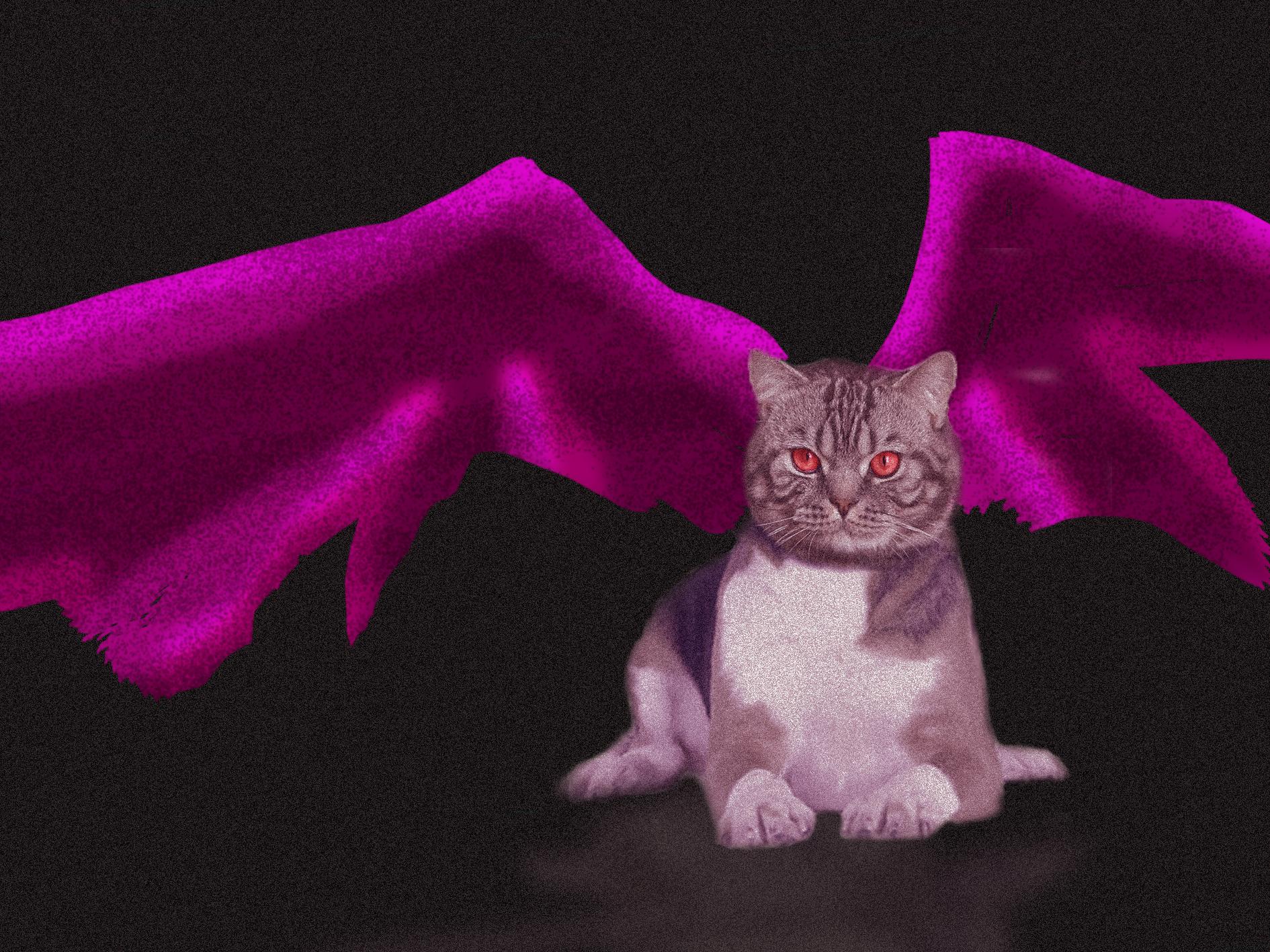 Devil Cat by DenAltVega