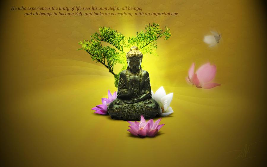 zen by Duntiwan