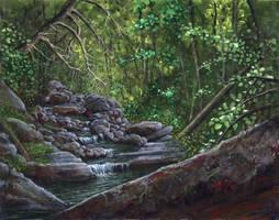 Plattskill Creek by kimdemulder
