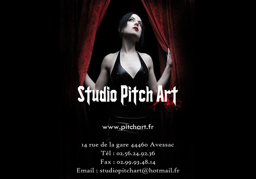 photo de Pitch Art