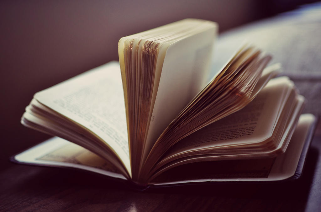Golden Pages by Theanimalparade