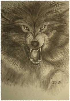 Beast's fury