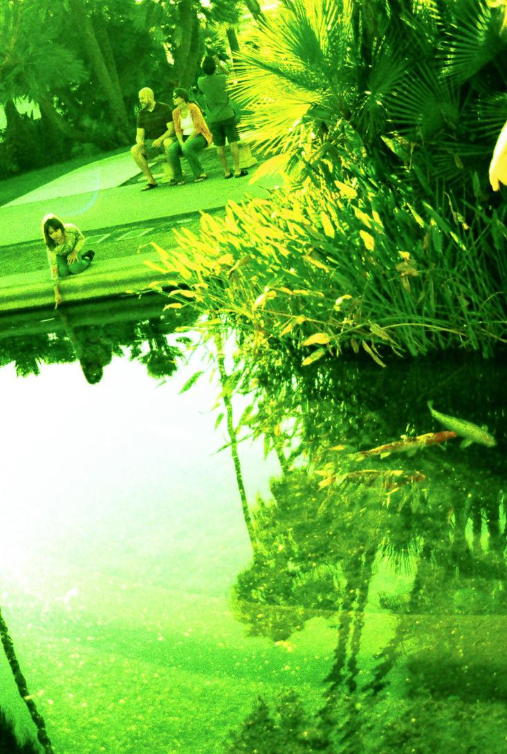 Koi Fishing by Illuminette
