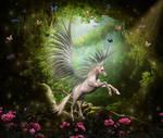 The secret place of unicorns