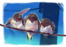 birds by Era-Artwork