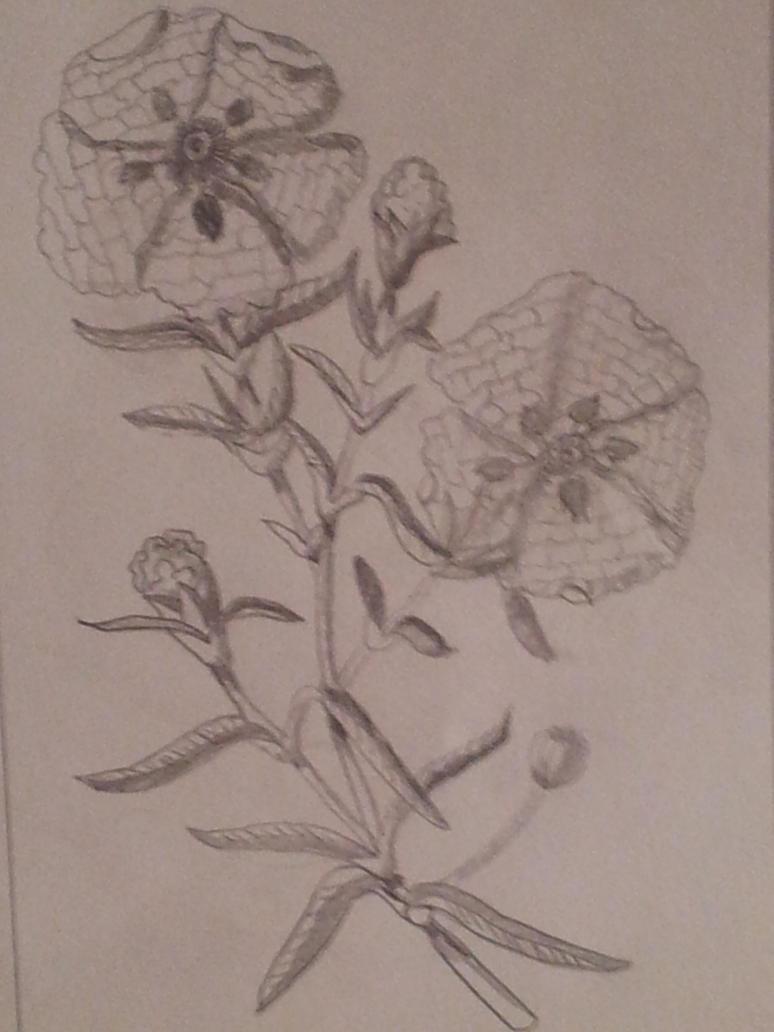 Dibujo blanco y negro 1 by LuciaHappy on DeviantArt