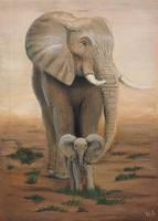 Elephant I by HerryTisco