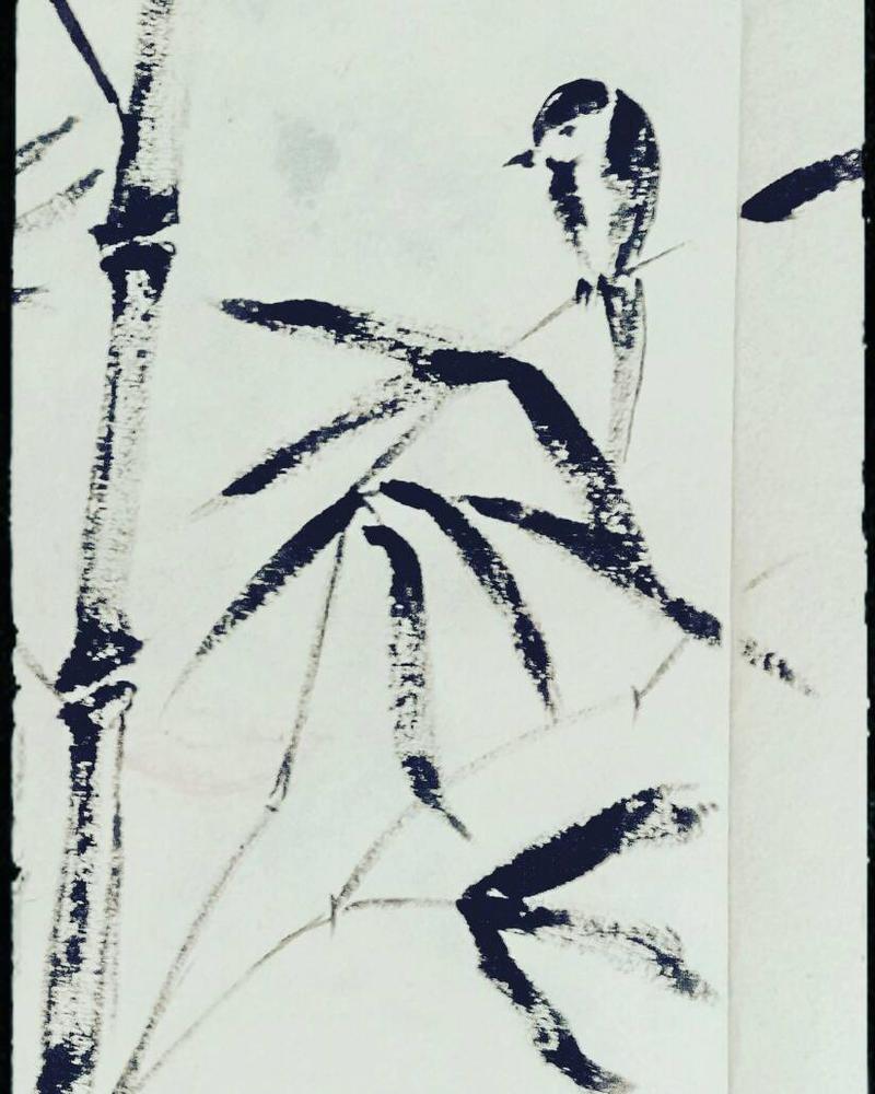 Chinese bamboo by Ranjanazad