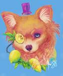 Lemon dog