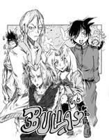 #20- Bulla Group Image
