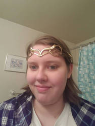 trying on Lord elrond's headpiece