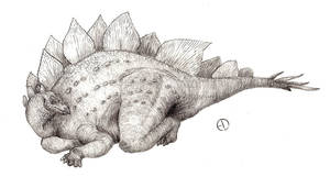 Stegosaurus by SaurArch