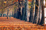 Autumn's play