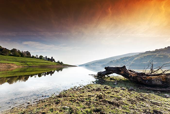 Morning lake by Bojkovski