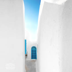 The White by Bojkovski