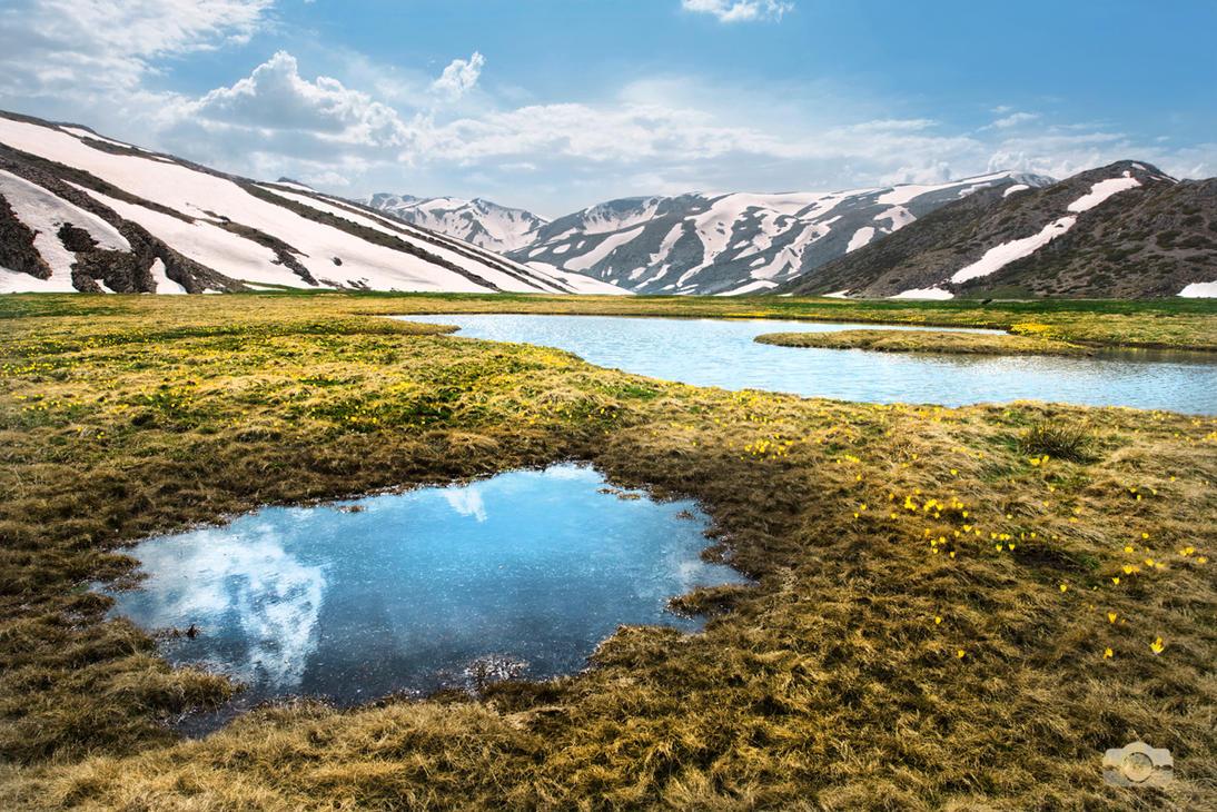 Tears of the mountains by Bojkovski