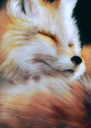 Fox by Kevin-Glint