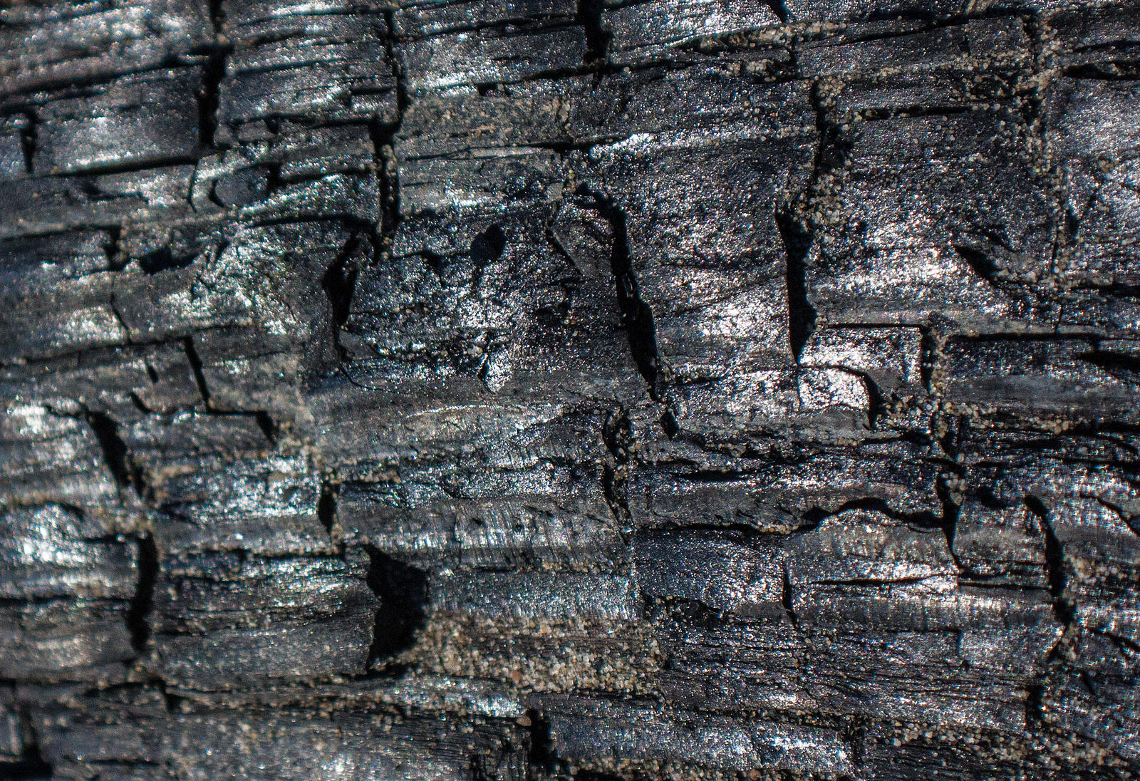 Burnt Wood 2 by KariLouMc