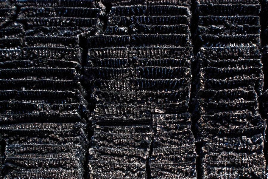 Burnt Wood 3 by KariLouMc