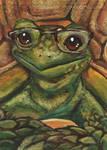 Nerdy But Cute Tortoise