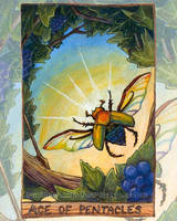 Ace of Pentacles Tarot Card by sobeyondthis